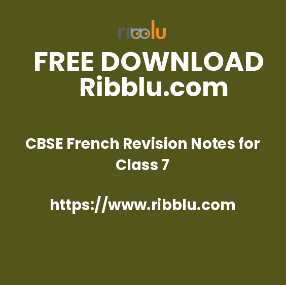 French Revision Notes for Class 7 - Ribblu