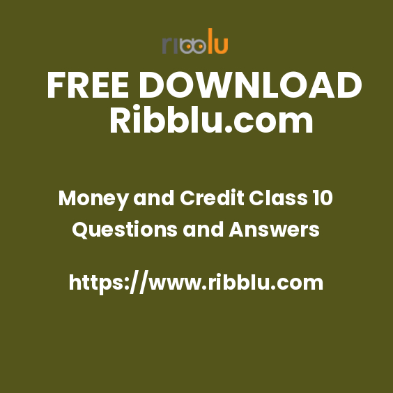 Money and Credit Class 10 Questions and Answers