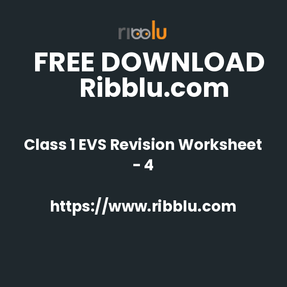 Class 1 EVS Revision Worksheet - 4