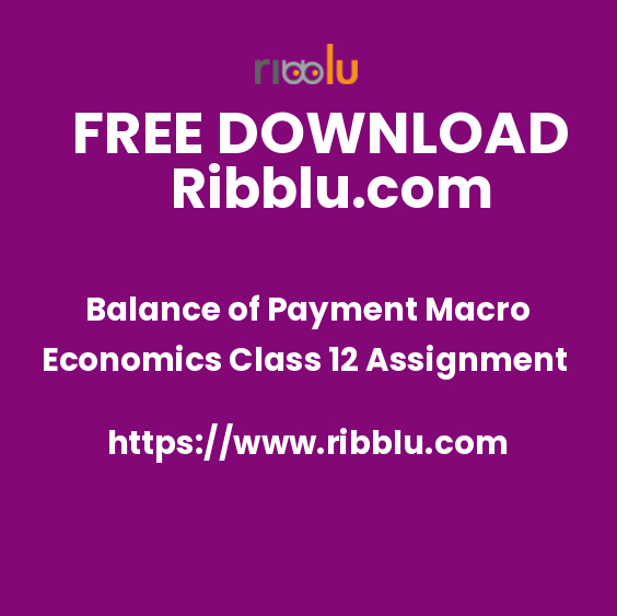 Balance of Payment Macro Economics Class 12 Assignment
