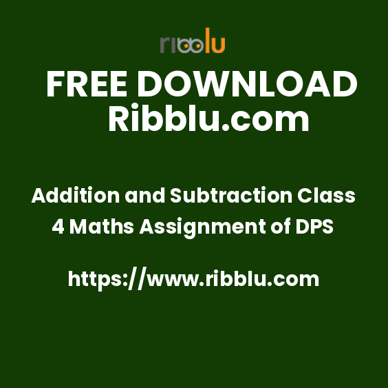 Addition and Subtraction Class 4 Maths Assignment of DPS